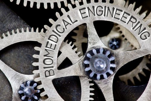 doctor of biomedical engineering degree programs