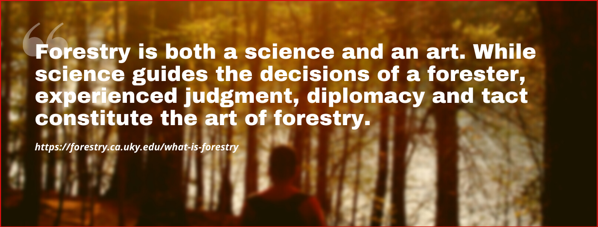 Forestry Careers fact